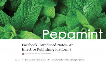 Facebook Notes- An Effective Publishing Platform?